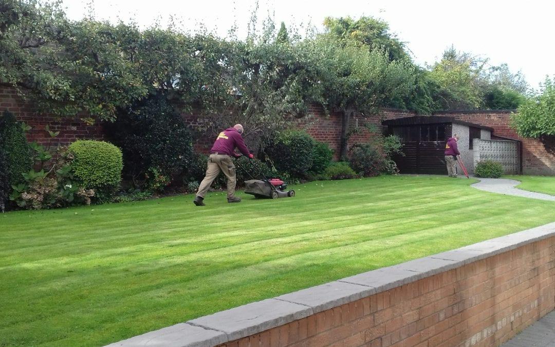 Garden maintenance in West Yorkshire